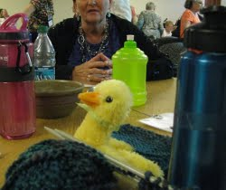 This little DUCC joined Sharilynn Upsdell at the 2011 DOTAC meeting in Oklahoma City.